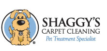 logo tile cleaning phoenix